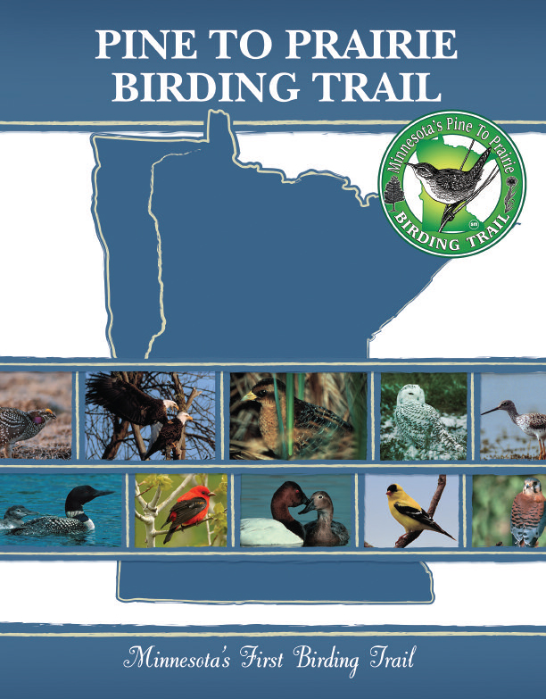 Minnesota Brochure